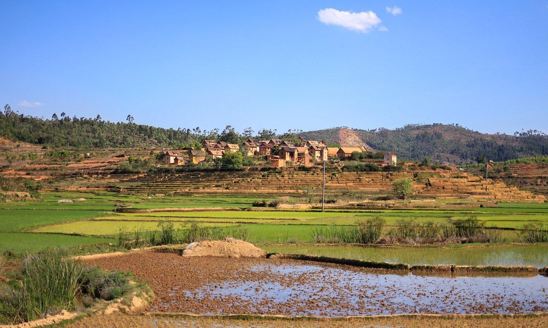 Madagascar, camino a Ranomafana