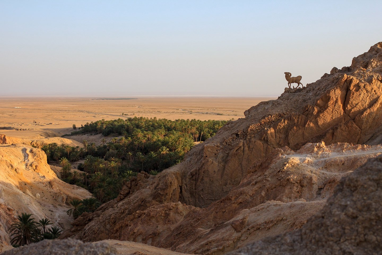 Vista del Oasis de Chebika.